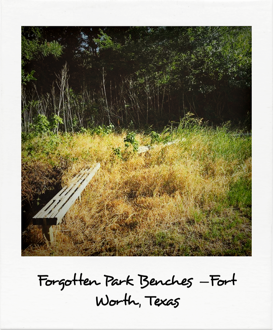 Forgotten Park Benches - Fort Worth, Texas